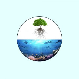 Uprooted Tree and Sea Floor in a Circle